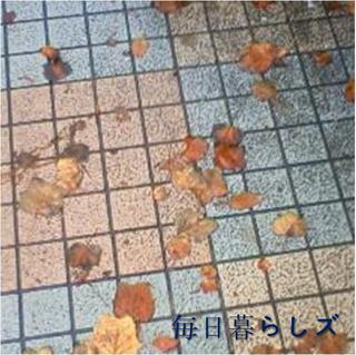 image-a02f6.jpg