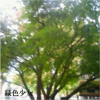 image-c85b3.jpg